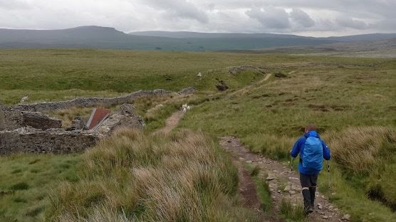 A hiker walks through the Yorkshire Dales while taking part in the Yorkshire Three Peak Challenge
